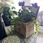 Jewellery Box Flower Planter