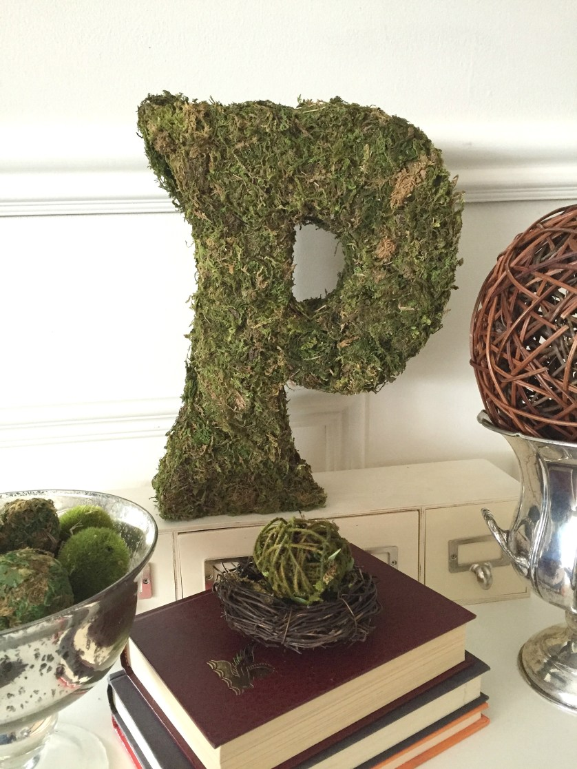 Moss Covered Monogram is one of the Best DIY Projects of 2016. Learn the steps to complete this easy monogram using a cereal box, duct tape and moss from the dollar store at apurdylittlehouse.com