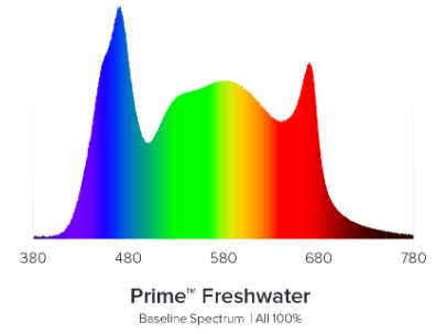 , Prime HD Freshwater