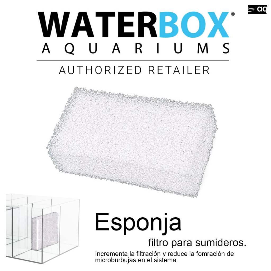 waterbox esponja para sumidero