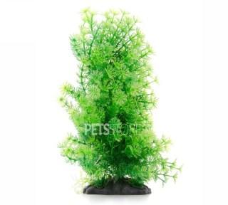 Plastično bilje Cabomba 15-20cm