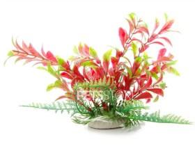 Plastično bilje LUDWIGIA crvenozelena 14-17cm