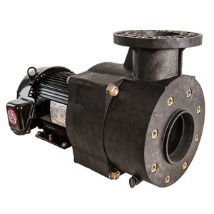 Pentair Aquatic Eco Systems Verus 850 Pump