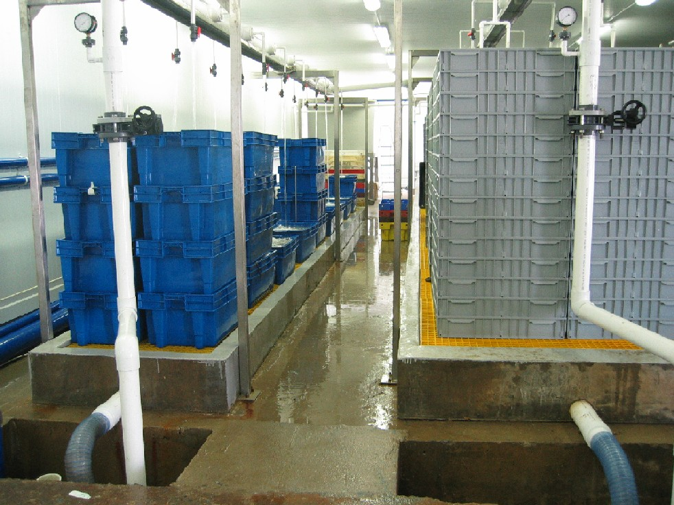 Sofrimar LTD Short reception unit