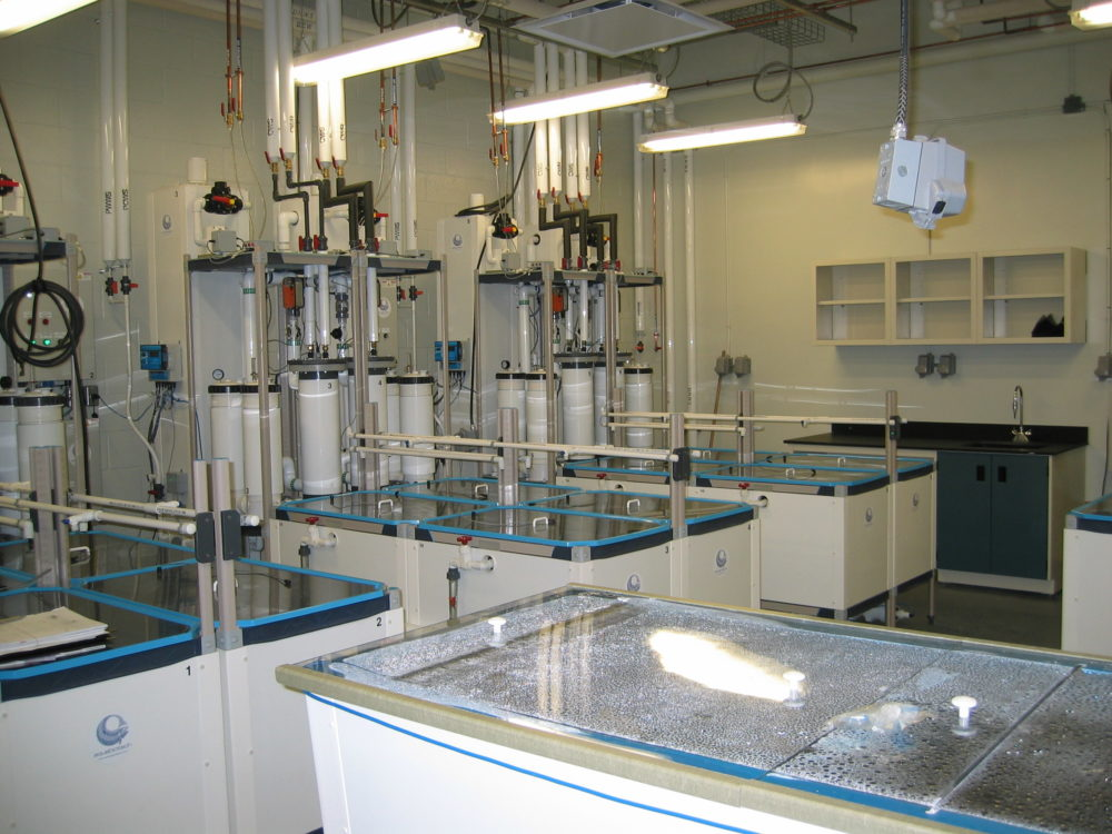 University of Lethbridge - Toxicology Lab