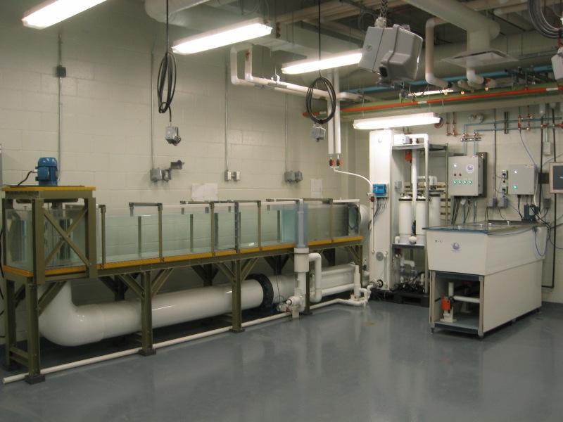 University of Lethcbridge - Physiology Lab