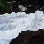 pond and bog garden underlay