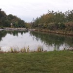 Pond liner repaired in Bristol