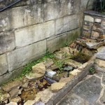 Water feature in need of re-build