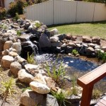 Water garden & Landscaping services