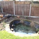 Pond maintenance Bristol