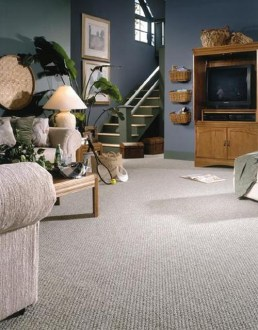 Berber  A Great Carpet for Kids   Pets   Aqualux Carpet     Berber