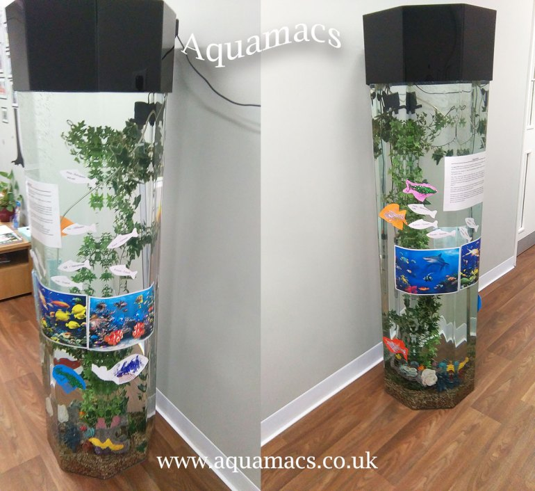 column acrylic aquariums