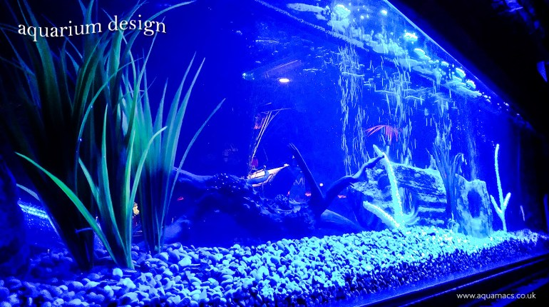 Aquarium Design UK