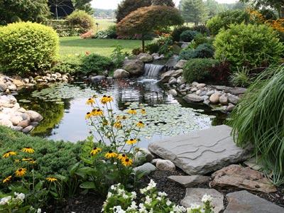 How to build a wildlife pond aquaplancton 01298 214003 - Build pond wildlife haven ...