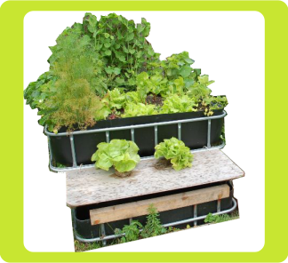 Full aquaponics systems
