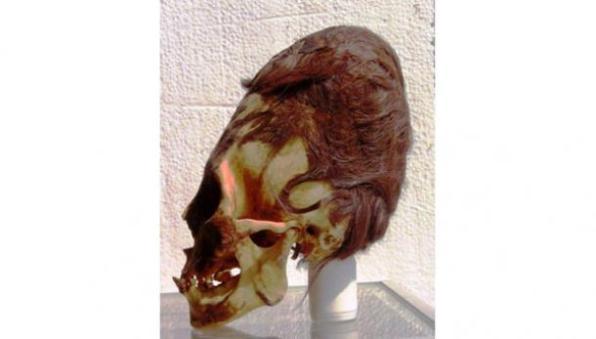 elongated-skull-paracas