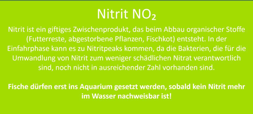 Aquarium Nitrifikation Nitrit