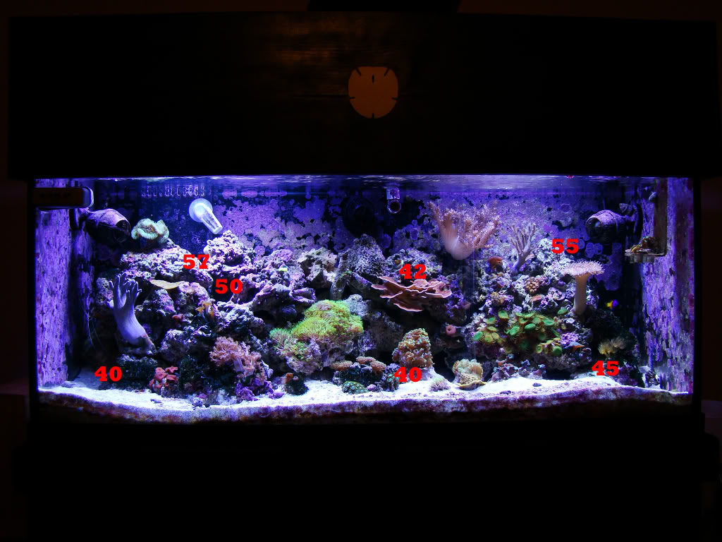 for freshwater aquarium lighting