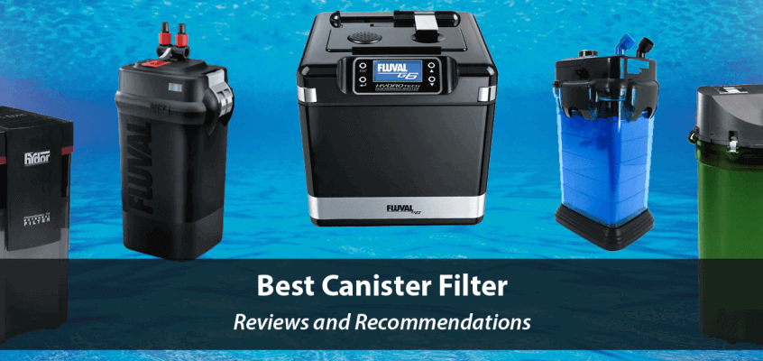 Best Canister Filters 2021 – Aquarium Canister Filters Review and Recommendations