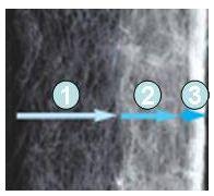 купить Сменный фильтрующий элемент для фильтра Nano Clean Eckfilter (3 шт.) + губка предварительной фильтрации в Киеве с доставкой. Aqua-Deco.com.ua