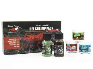 shrimps forever caridina box