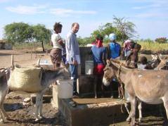 Expertise des puits à Haïti