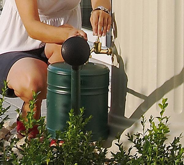 Utilisation de l'eau de pluie pour l'arrosage