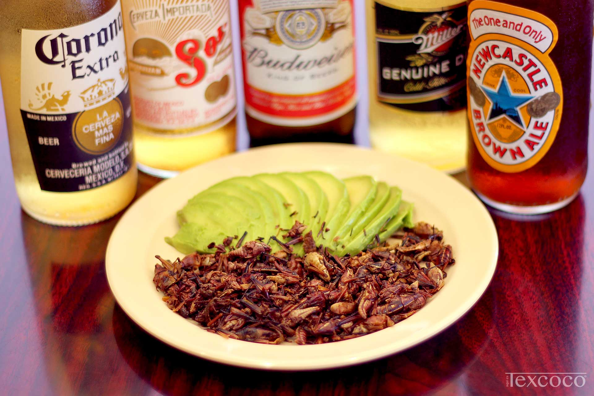 Chapulines, Avocado, and Beer