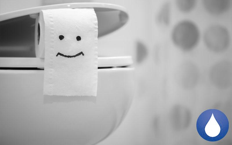 evitar los atascos en el inodoro