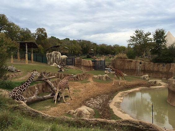 حديقة حيوان دالاس الولايات المتحدة