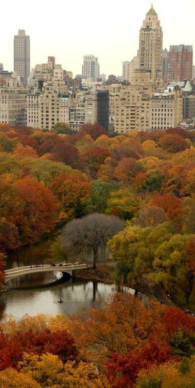صور الحديقة الشعبية فى نيويورك