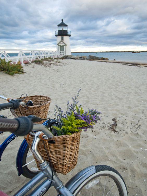الدراجات الساحلية