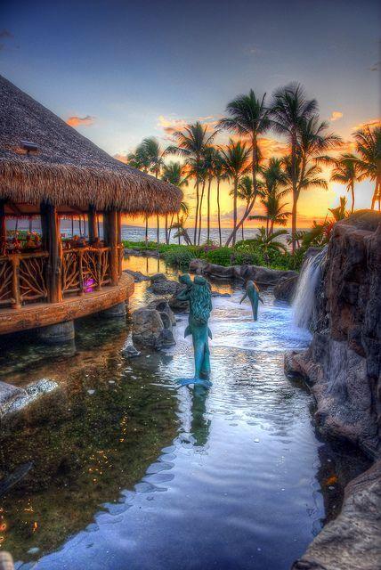 السباحة في هاواي
