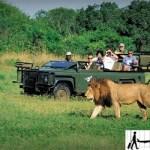 السياحة في جنوب افريقيا و 15 مكان سياحى لا تفوت زيارته