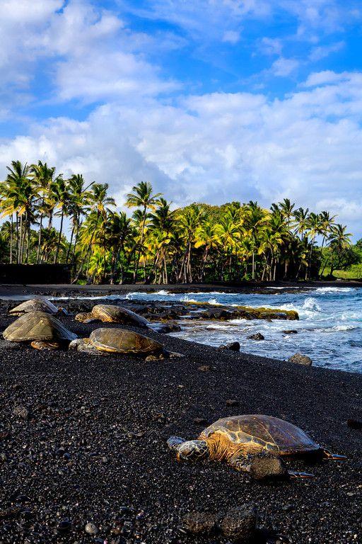 شاطئ الرمال السوداء