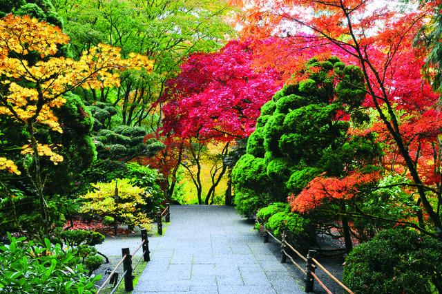 حدائق بوتشارت
