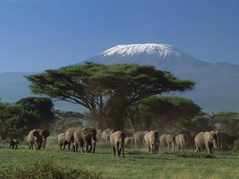 حديقة جبل كينيا الوطنية