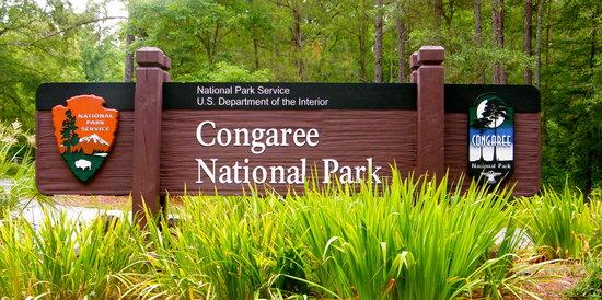 متنزه Congaree الوطني