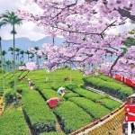 متعة السياحة في تايوان و 10 من اجمل الاماكن السياحية فيها