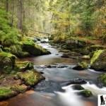 أجمل 10 مناظر طبيعية ساحرة مع الأنهار حول العالم