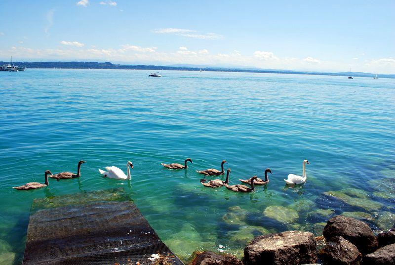 بحيرة Neuchâtel