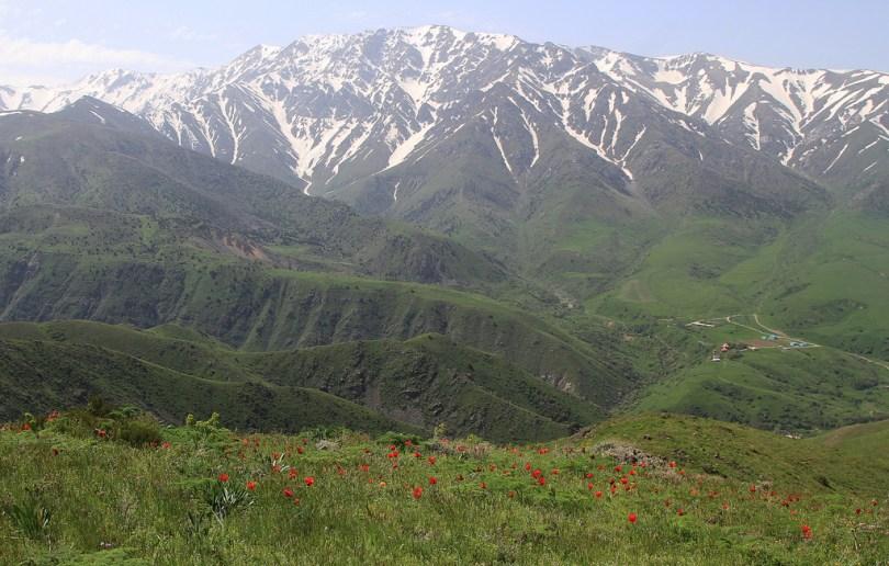 محمية Aksu Zhabagly الطبيعية