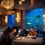 إستكشف سحر الرفاهية في أرقى مطاعم دبي