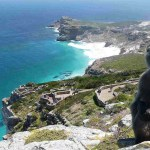 السياحة في كيب تاون، روعة الاستمتاع بالترفيه في أفريقيا
