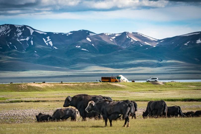 قيرغيزستان