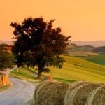 أجمل الأماكن السياحية في إقليم توسكانا الإيطالي