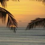 تعرف على أفضل ما يمكنك الاستمتاع به في جزيرة باليمجانا