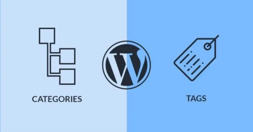 كيفية استخدام العلامات والفئات في ووردبريس دليل تحسين محركات البحث