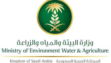 Photo of وزارة البيئة تعلن عن توفر وظائف إدارية للرجال والنساء بجازان